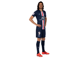 /media/27068/profile-9-cavani.png